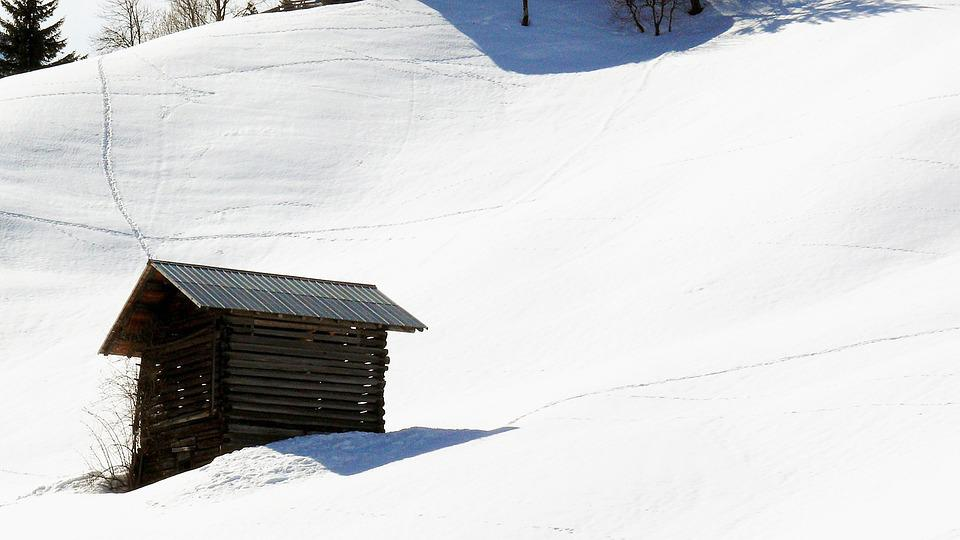 Tree, Haze, Ice, Icy, Eiskristalle, February, Frozen
