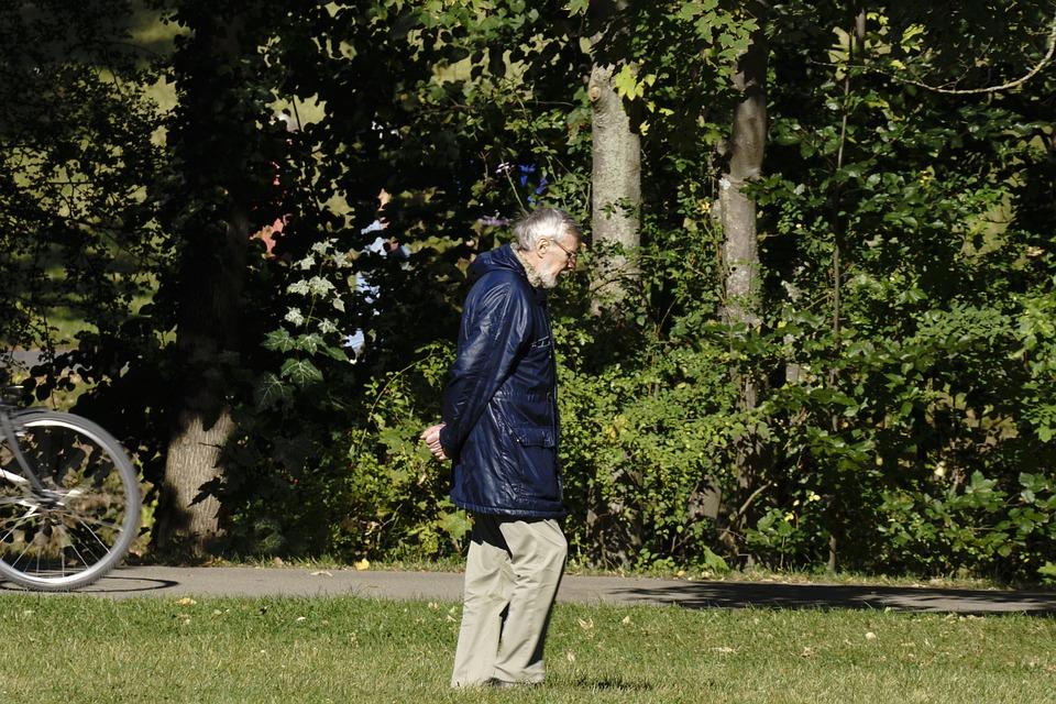 Old Man, Walking, Park, Elderly Man
