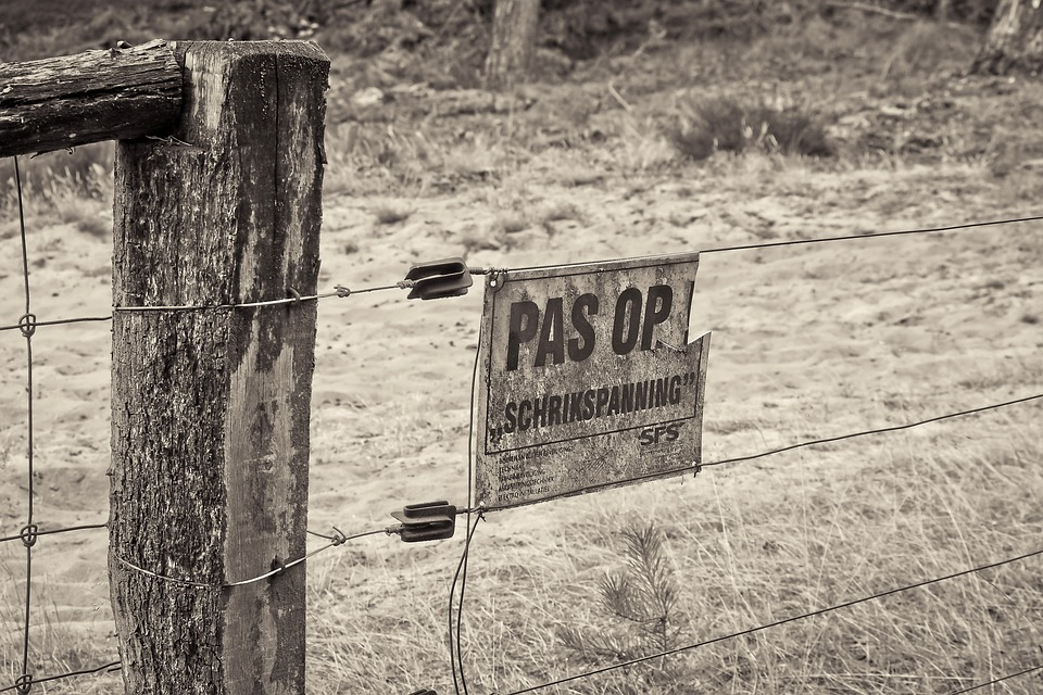 Fence, Electric Fence, Pasture Fence, Wire, Metal, Post