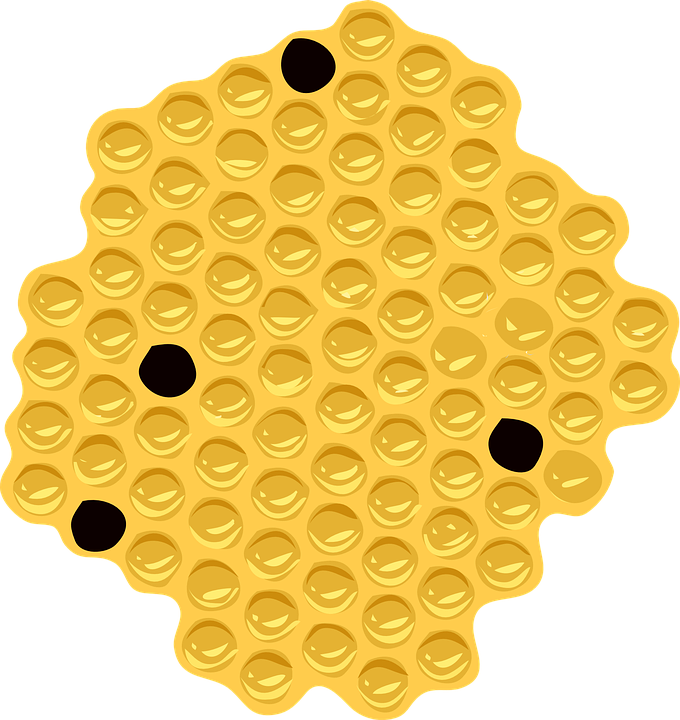Shape, Orange, Spots, Element, Yellow, Black Spots