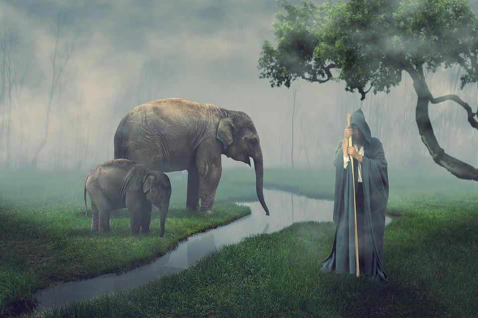Elephant, Guard, Man, Landscape, Nature, Photomontage