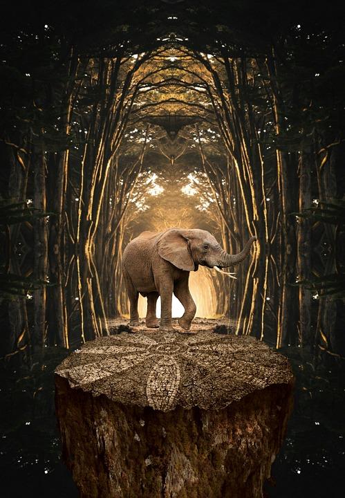 Sculpture, Travel, Outdoors, Elephant, Art, Old, Open