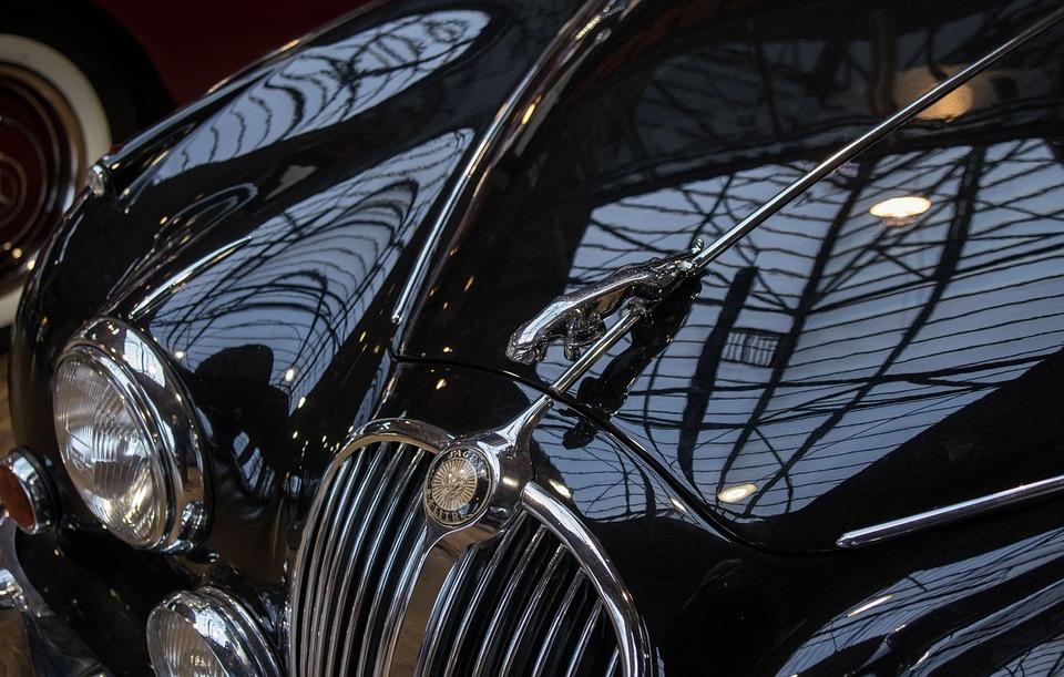 Auto, Jaguar, Oldtimer, Emblem, Logo, Hood, Grille