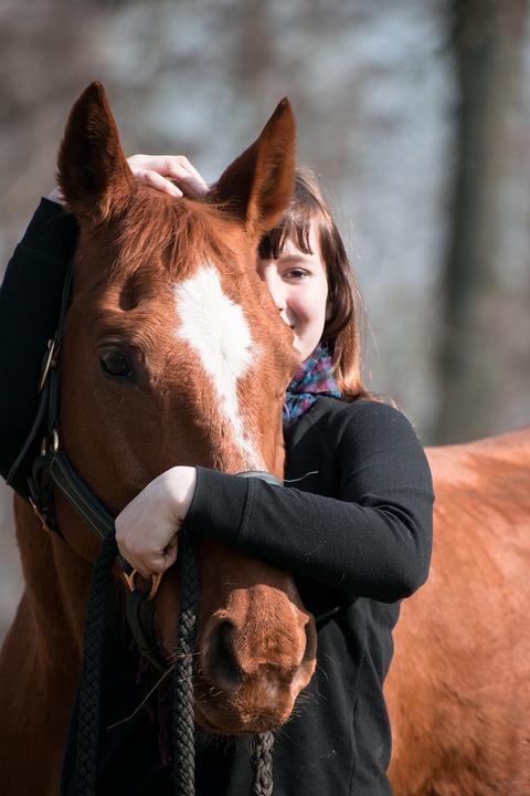 Horse, Animal, Fuchs, Human, Girl, Reiter, Embrace