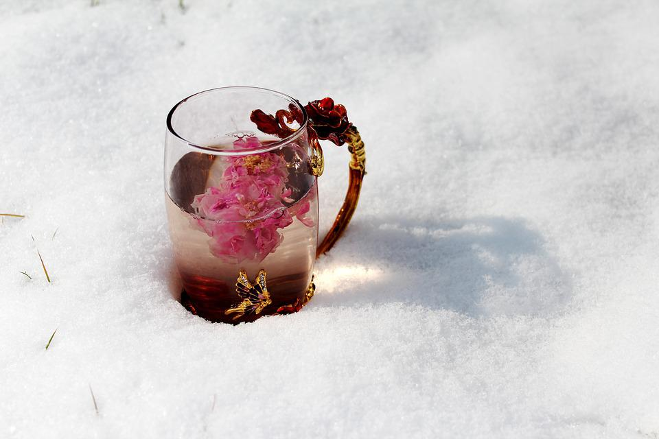 Tea Rose Corolla, Enamel Cup, Heavy Snow, Close-up