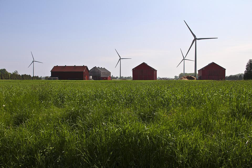 Grass, Windmills, Landscape, Wind, Sky, Power, Energy