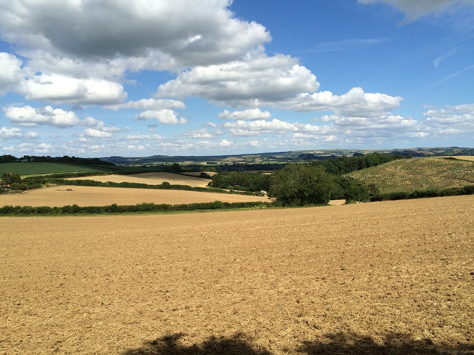 English Countryside, Fields, Summer, Sky, Clouds