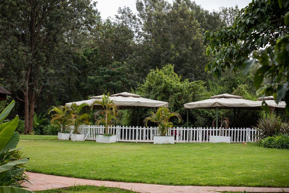 House, Building, Garden, Entrance, Facade, Architecture