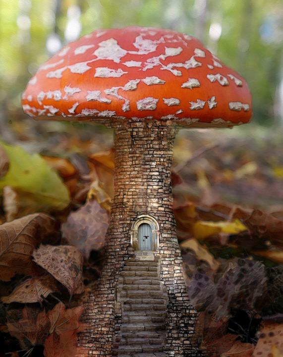Doorway, Entrance, Mushroom, House, Tiny, Stone