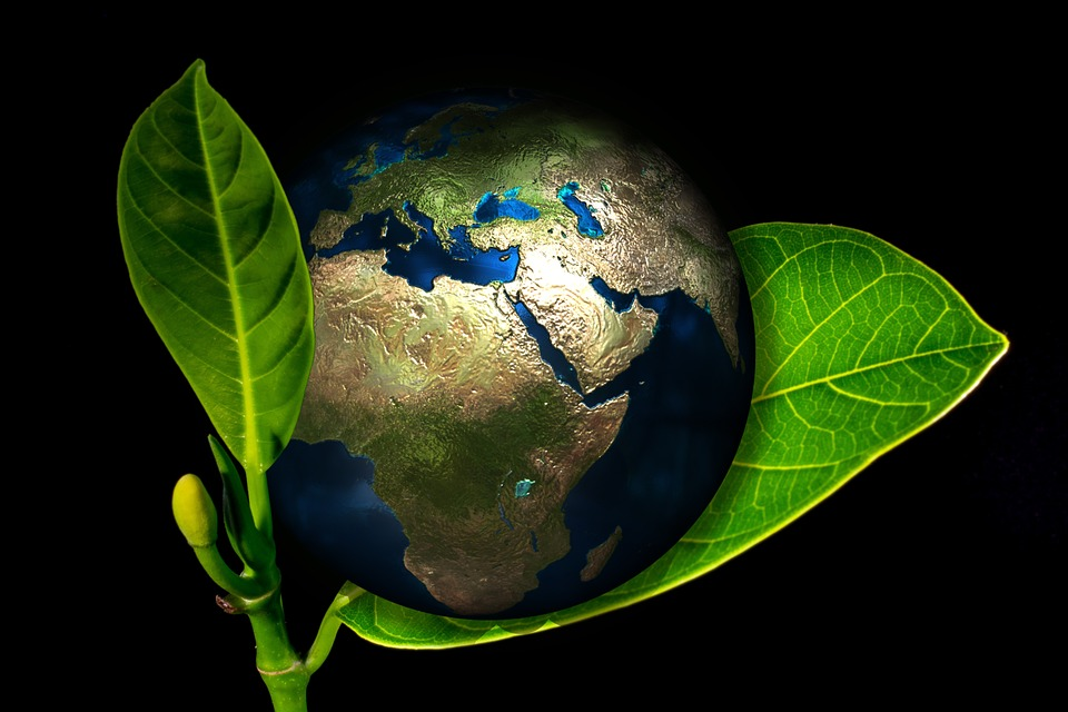 Earth, Globe, Birth, New, Arise, Environment