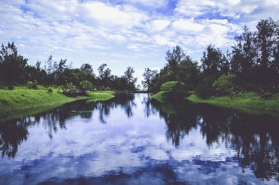 Clouds, Daylight, Environment, Forest, Grass, Lake