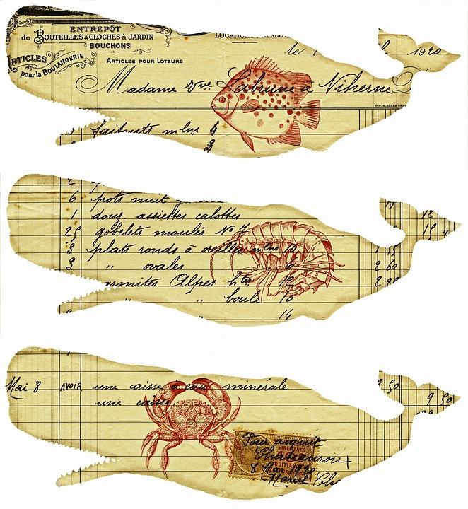 Whales, Ephemera, Old Paper, Nautical, Fish