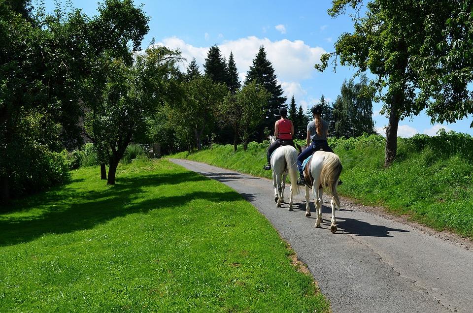 Ride, Equestrian, Riding Horses, Horse, Reiter, Pony