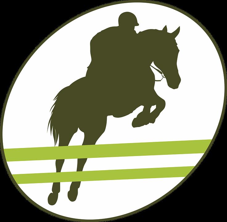 Jump, Obstacle, Equestrian, Horse, Equine, Jumper