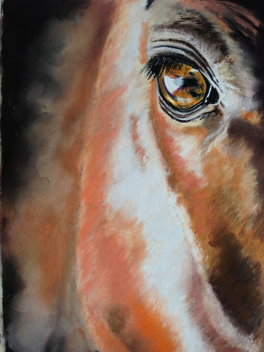 Horse, Eye, Pastel Pencil Drawing, Equine, Animal