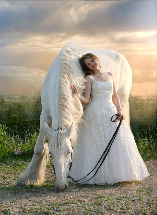 Horse, Equine, White Horse, White Dress, Friendship