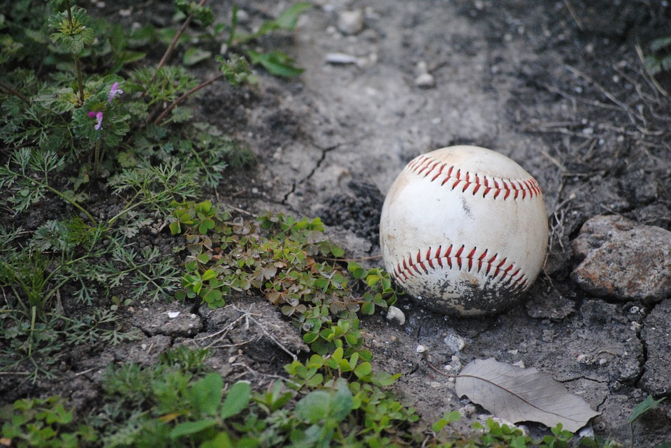 Baseball, Fallen, Accessory, Ball, Collage, Equipment