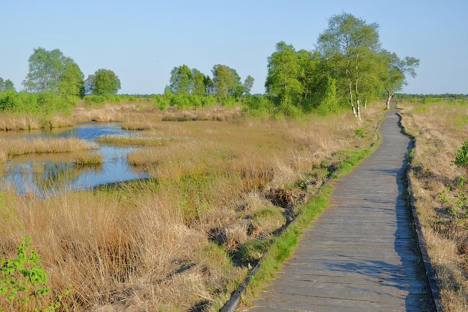 East Frisia, Eternal Sea, Moor, Moorland