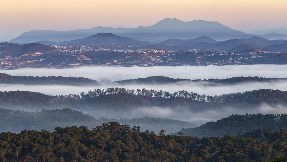 Mountains, Forests, Fog, Evening, Background, Trees