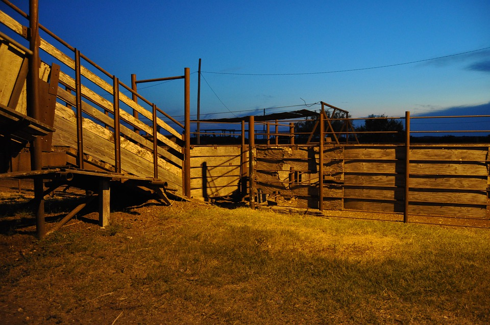 Corral, Evening, Farm, Rural, Gate, Ranch, Stall