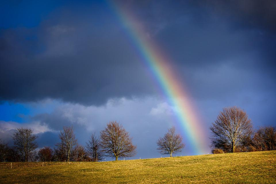 Rainbow, Evening Light, Nature, Mood, Landscape