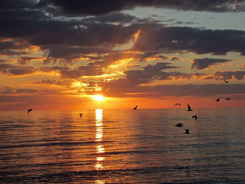 Naples, Sunset, Seagulls, Florida, Beach, Sky, Evening