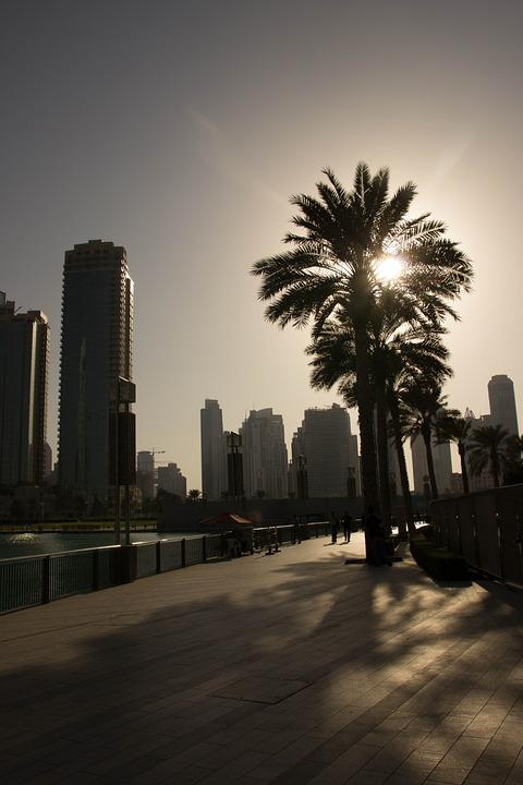 Dubai, Palm, Evening Sky, Setting Sun, Sun, Sunset, Uae