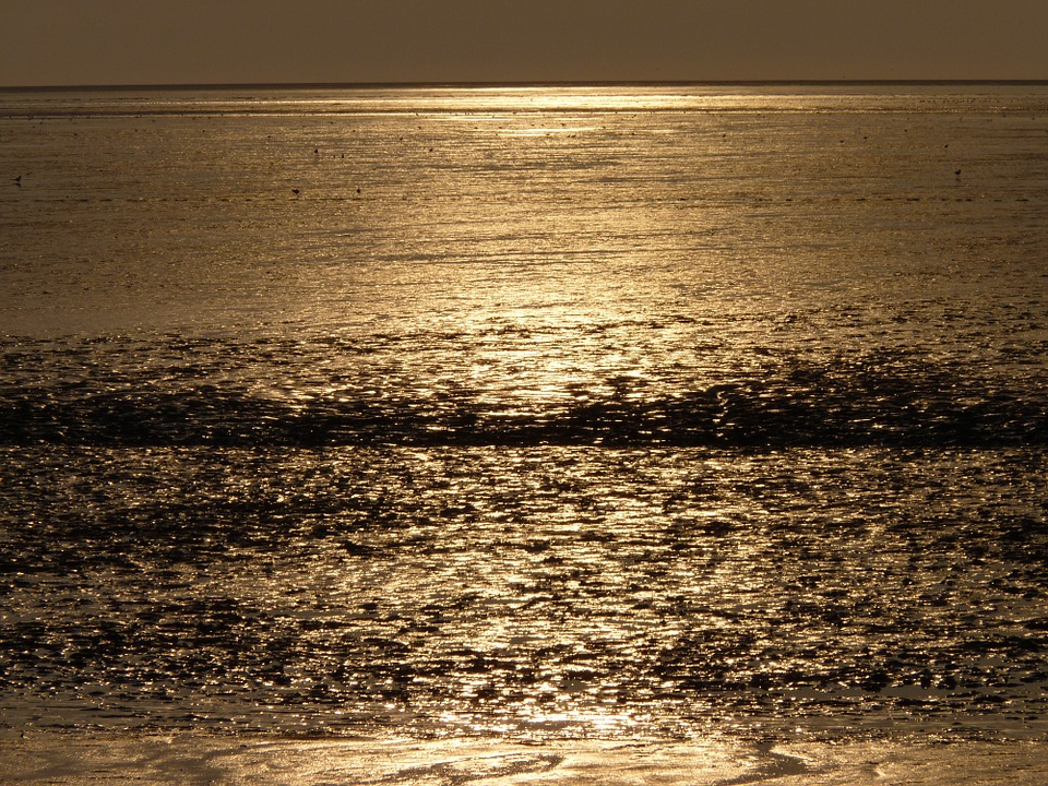 North Sea, Wadden Sea, Evening Sun, Water, Sunset