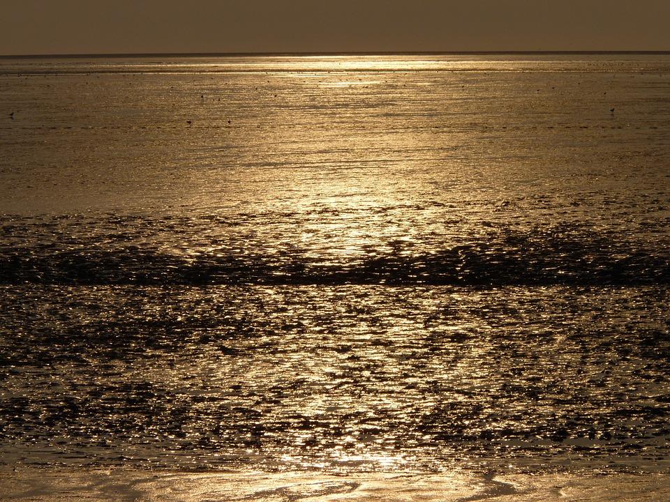 North Sea, Wadden Sea, Evening Sun, Water, Sunset