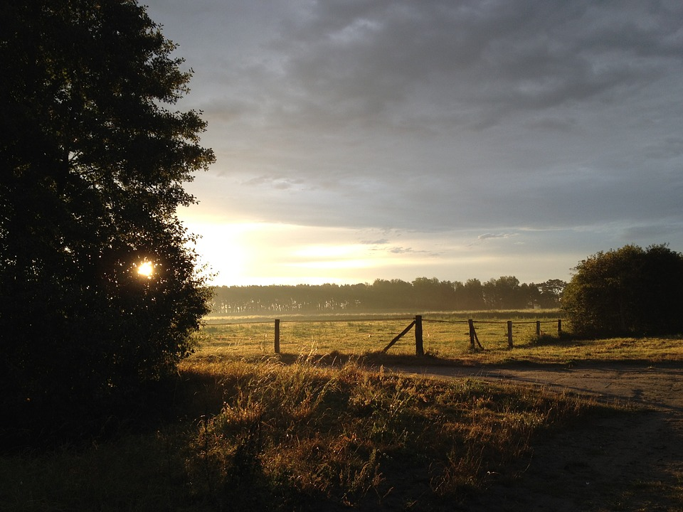 Landscape, Germany, Evening, Sun, Reported, Sunrise