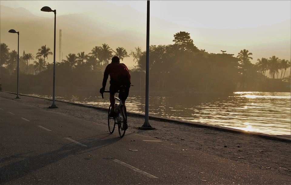 Cycling, Light, Exercise, Pond, Shadows, Bike, Eventide