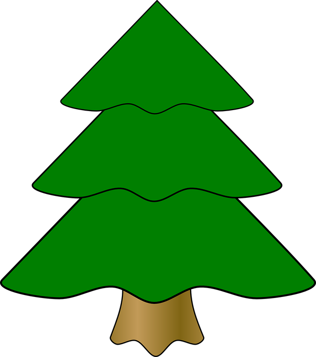 Evergreen, Fir Tree, Green, Tree, Christmas, Pine, Fir