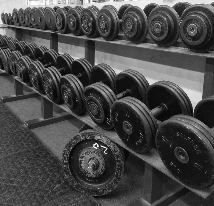 Weight Lifting, Fitness, Exercise, Muscle, Strength