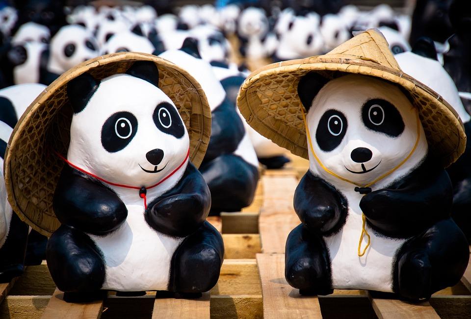 Panda, Taipei, Exhibition, Cute, Paper