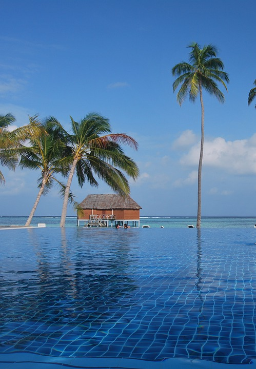 Blue, Exotic, Island, Maldives, Ocean, Palm Trees