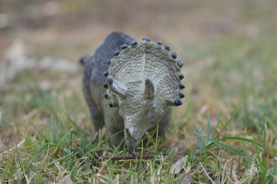 Dinosaur, Toy, Miniature, Play, Extinct, Figure