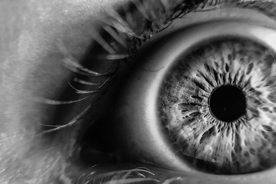 Blur, Close-up, Eye, Eye Lashes, Iris, Macro