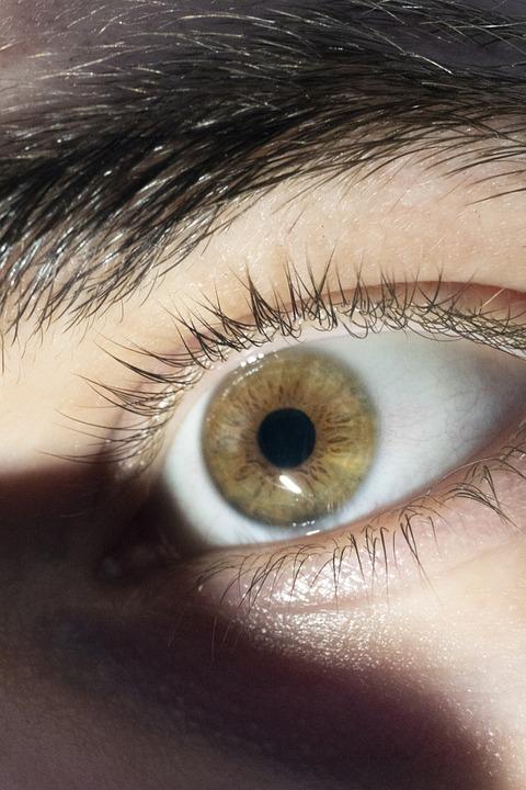 Eye, Man, Person, Brown, Eyebrow, Guy