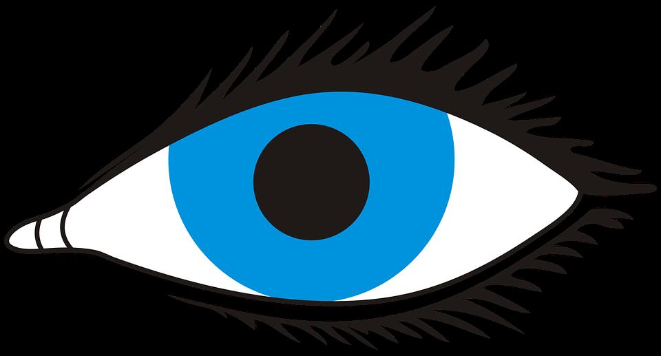 Eye, Sight, Look, Eyes, No Background, Observation