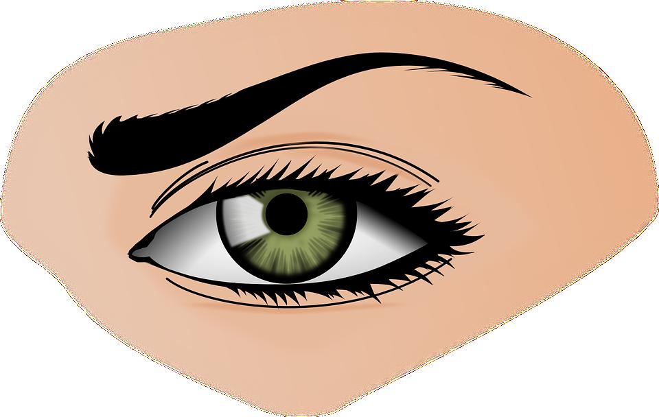 Iris, Eye, Eyebrows, Female, Green, Eye Shadow