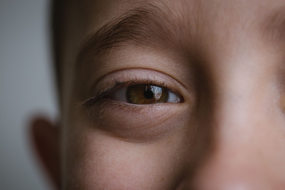 Boy, Brown Eyes, Eyes, Face, Male, Young, Cute