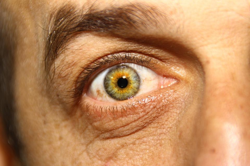 œil, Eyes, Iris, Look, Visual, View, Eye, Green Eyes