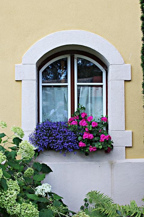 Facade, Window, Architecture, Old, Flower, Blütenmeer