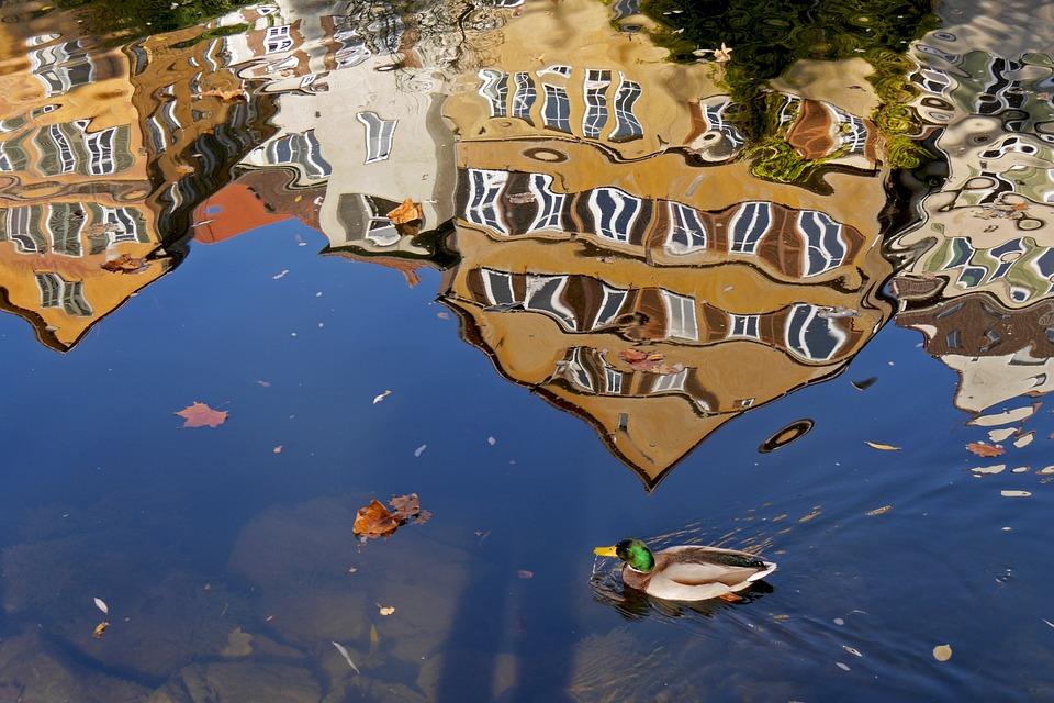 Tübingen, Mirroring, Facade Mirror, Distortion