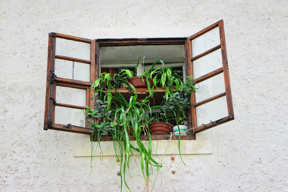 Window, Old, Old Window, Facade, Flowers, Historically
