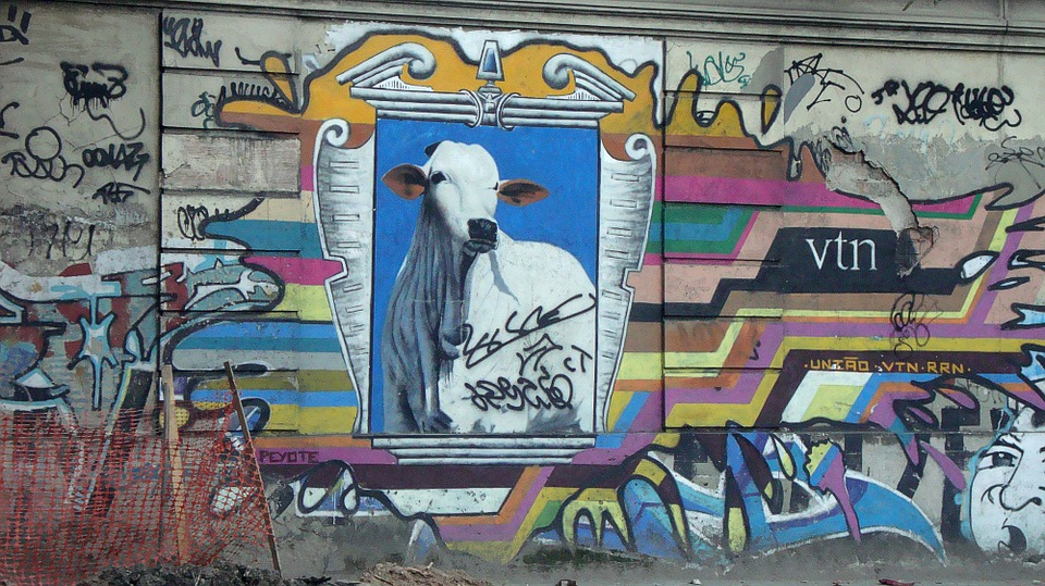 Graffiti, Cow, Rio, Wall, Painting, Facade, Frescos