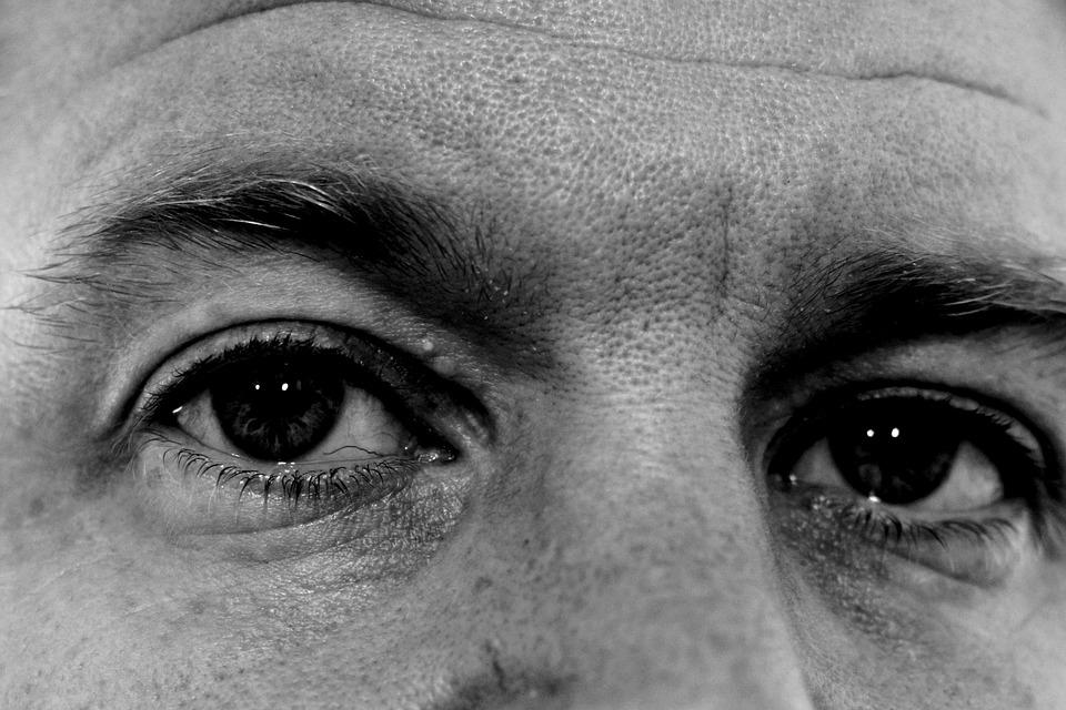 Eyes, Face, Freckles, Man, Male, Close, Portrait