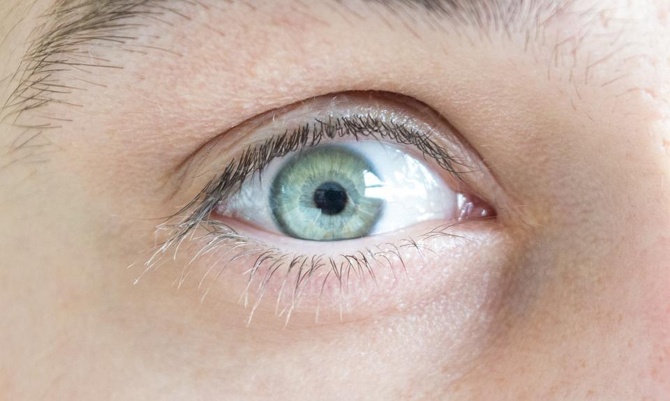 Eye, Iris, Green, Blue, Face, Skin, Look, White, Clean