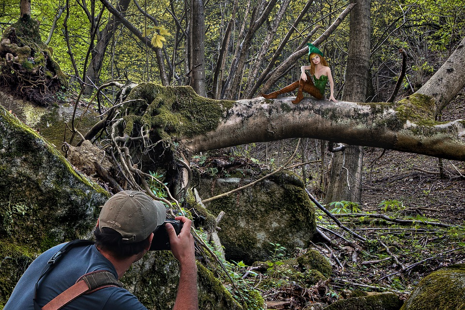 Photographer, Elf, Fairy, Fantasia, Forest