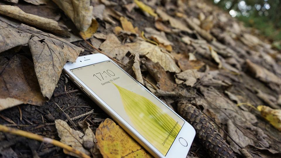 Iphone, Apple, Fall, Leaves, Phone, Floor